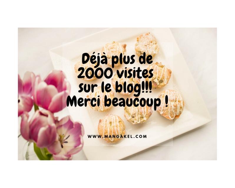 mangakel, blog, 2000 visites